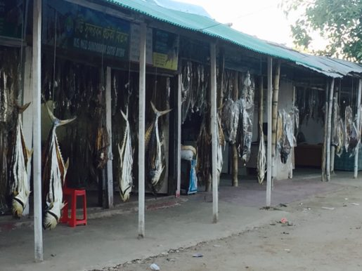 Dried fish for sale Cox's Bazar Bangladesh