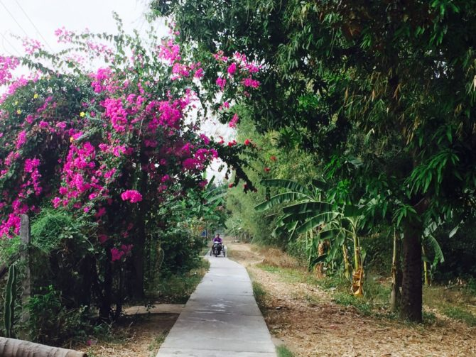 Street lined with flowers on Koh Trong Island, Kratie, Cambodia