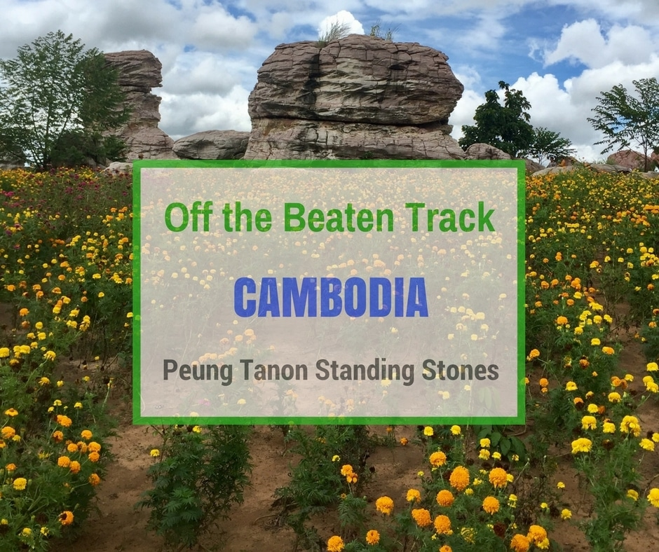Peung Tanon Standing Stones | Off the Beaten Track Cambodia