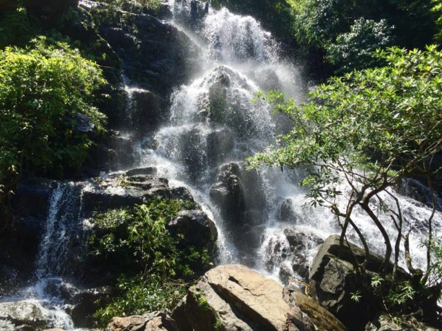 Waterfall in Phong Nha Botanical Garden in Vietnam
