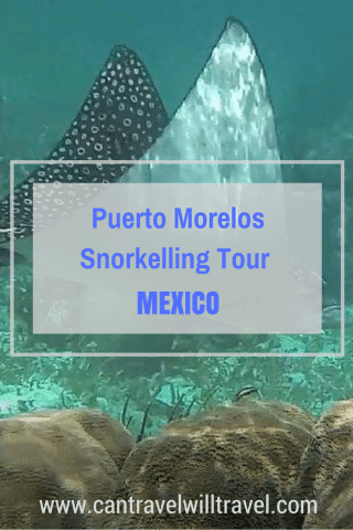 Puerto Morelos Snorkelling Tour With Wet Set Diving Adventures in Mexico