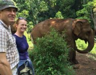 Elephant Valley Project in Cambodia