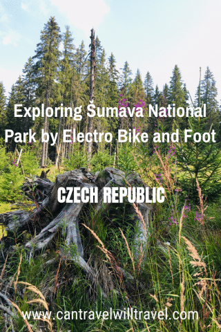 Exploring Sumava National Park by Electro Bike and Foot, Pin2
