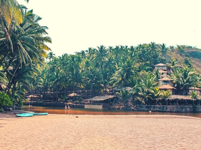 Cola Beach in Goa. Palm trees and kayaks.