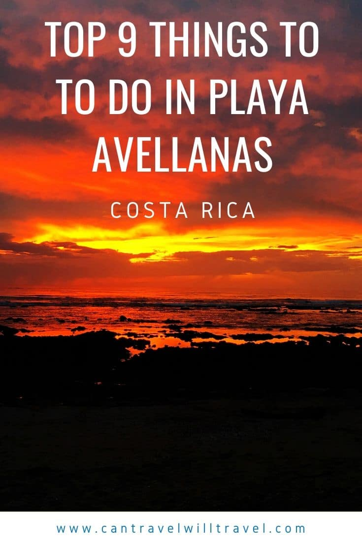 Top 9 Things to Do in Playa Avellanas in Costa Rica