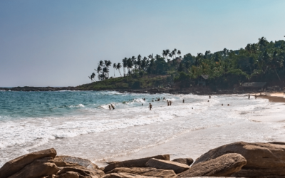 Top 8 Things to do in Tangalle   Sri Lanka