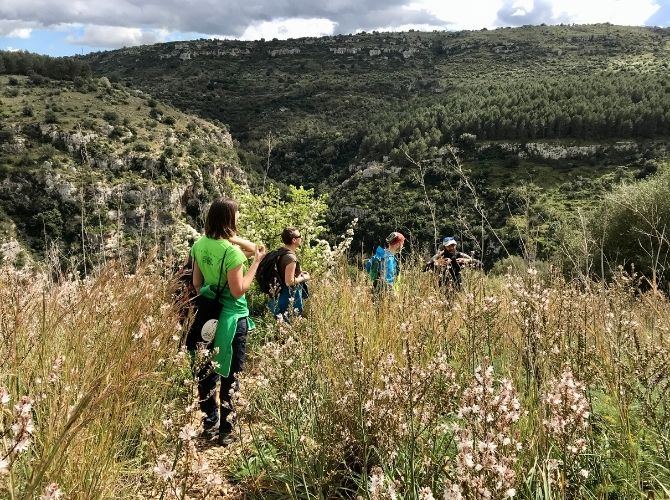 Four people hiking through wildflowers in Valle dell'Anapao (Anapo Valley) in Pantalica nature Reserve